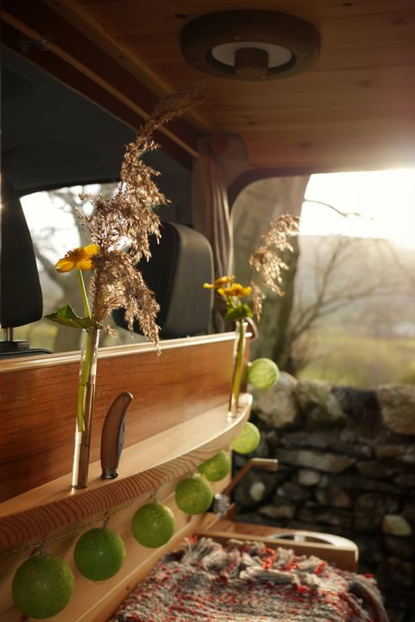 Plants and fairy lights in Finn the campervan