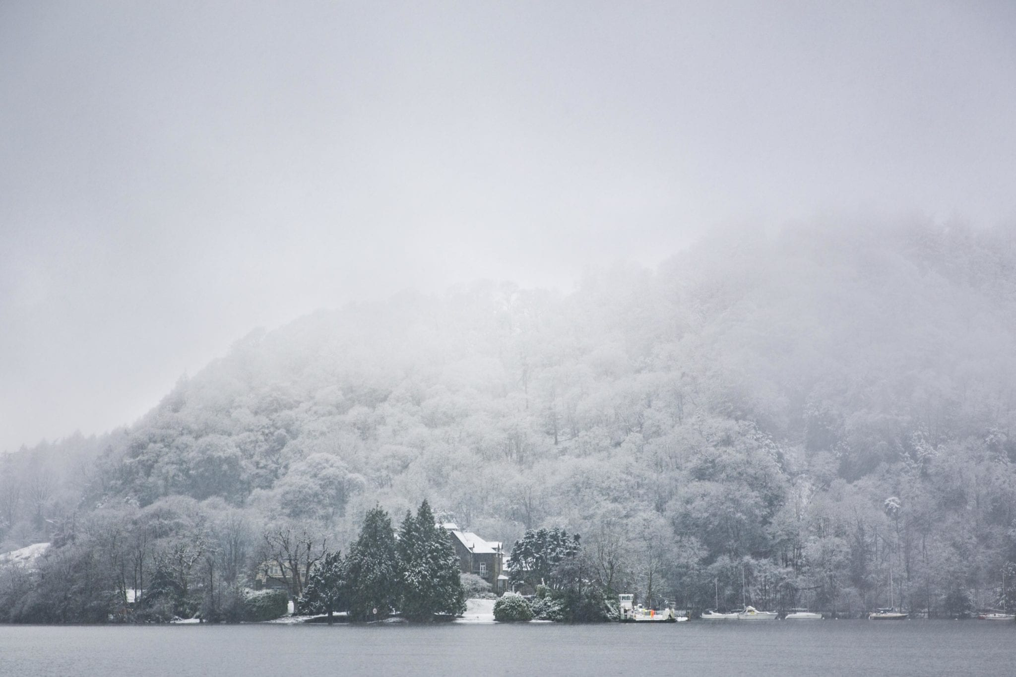 a snowy foggy lake and trees in UK